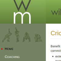 Willowmasters home page